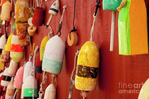 Photograph - Lobster Post Buoys II by Brian Jannsen