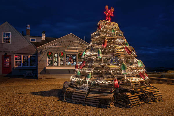 Photograph - Lobster Pot Tree - Nubble Light Maine by Joann Vitali