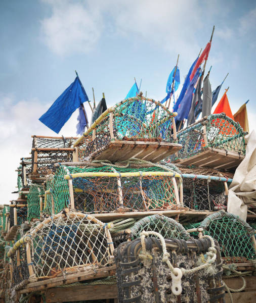 Cage Photograph - Lobster Pots With Flags On Deck by Monty Rakusen