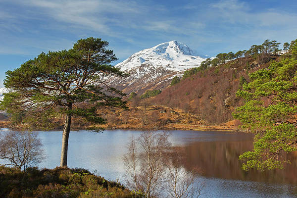 Photograph - Loch Affric, Scotland by Arterra Picture Library