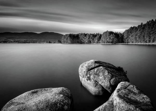 Wall Art - Photograph - Loch Garten by Dave Bowman
