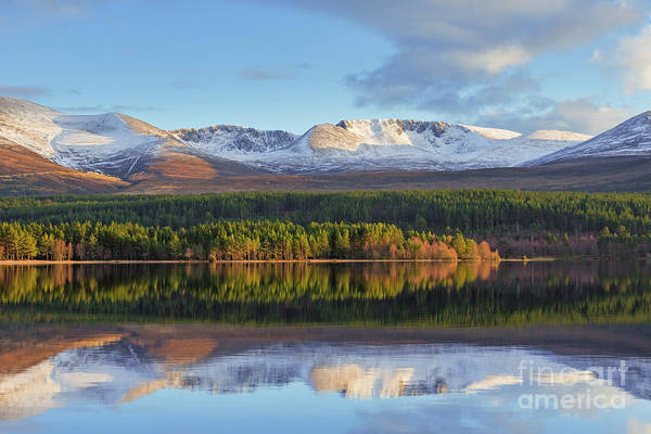 Photograph - Loch Morlich, Scotland by Arterra Picture Library