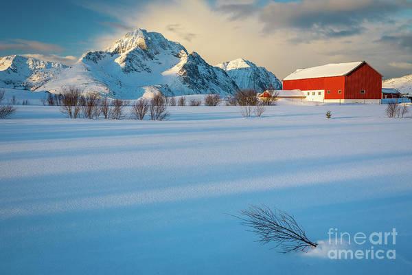 Wall Art - Photograph - Lofoten Farm by Inge Johnsson