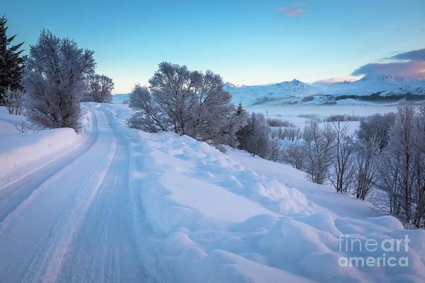 Wall Art - Photograph - Lofoten Winter Road by Inge Johnsson