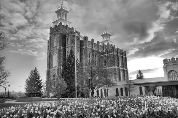 Photograph - Logan Temple Over The Flowers Black And White by Adam Jewell