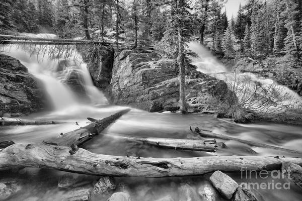 Wall Art - Photograph - Logs Below Twin Falls Black And White by Adam Jewell