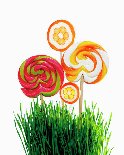 Cut Out Photograph - Lollipops And Wheat Grass by Brian Hagiwara
