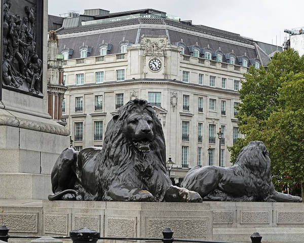 Photograph - London Uk Trafalgar Square Lion Statue And Fountain United Kingdom Architecture by Toby McGuire
