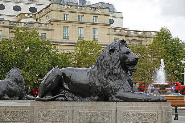 Photograph - London Uk Trafalgar Square Lion Statue And Fountain United Kingdom by Toby McGuire