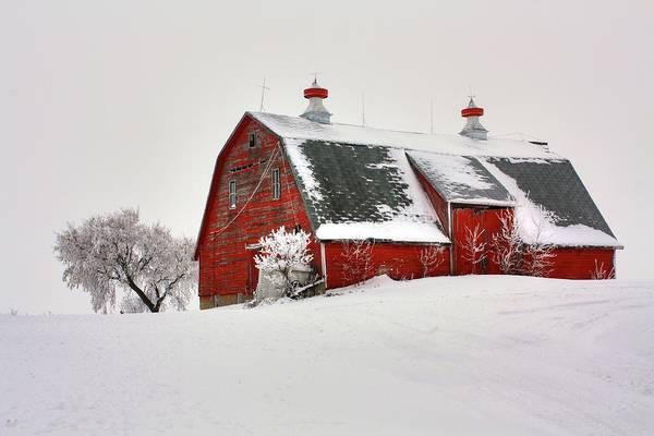 Photograph - Lone Barn by David Matthews
