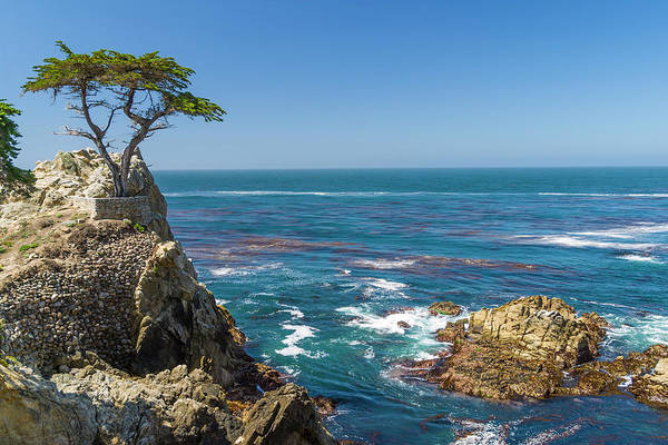 Monterey Cypress Photograph - Lone Cypress Tree, California by Stuart Dee