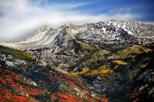 Lone Peak Wilderness Area Art Print