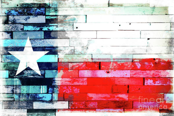 Wall Art - Photograph - Lone Star Flag by Delphimages Photo Creations