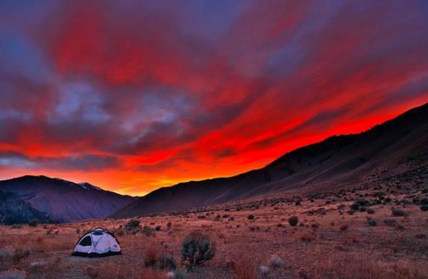 Photograph - Lone Tent by Tom Gresham