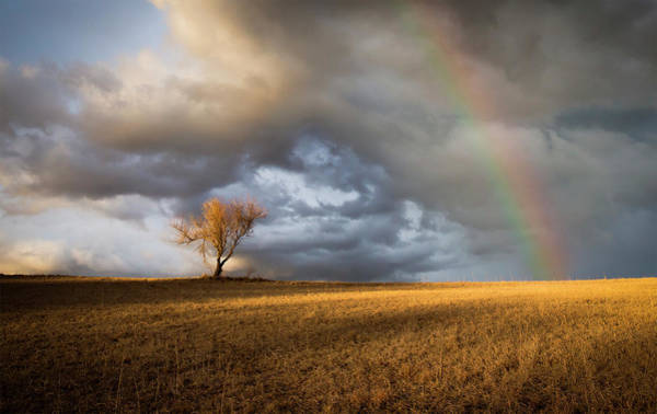 Nebraska Photograph - Lonely Rainbow by Jake Olson Studios Blair Nebraska
