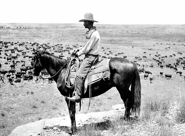 Bolivia Mixed Media - Lonesome Dove, Cowboy by Thomas Pollart