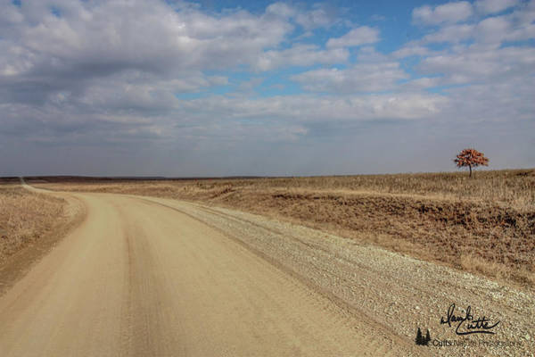 Wall Art - Photograph - Lonesome Road by David Cutts