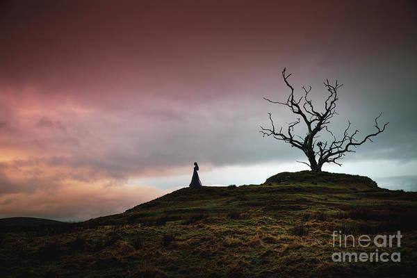 Wall Art - Photograph - Lonesome Sundown by Evelina Kremsdorf