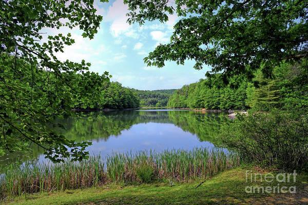 Photograph - Long Branch Lake - Pipestem State Park by Kerri Farley