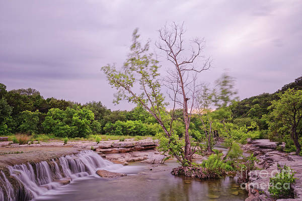 Photograph - Long Exposure Photograph Of Link Falls At Lower Bull Creek Greenbelt In Austin - Texas Hill Country by Silvio Ligutti