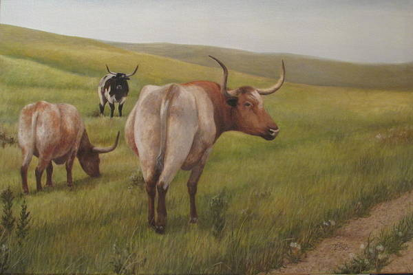 Painting - Long Horns by Tammy Taylor