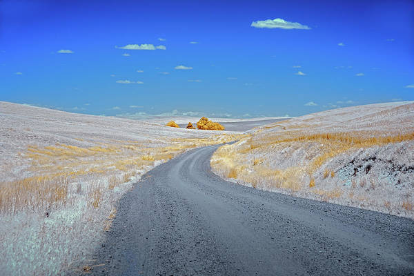 Wall Art - Photograph - Long Road In Palouse by Jon Glaser