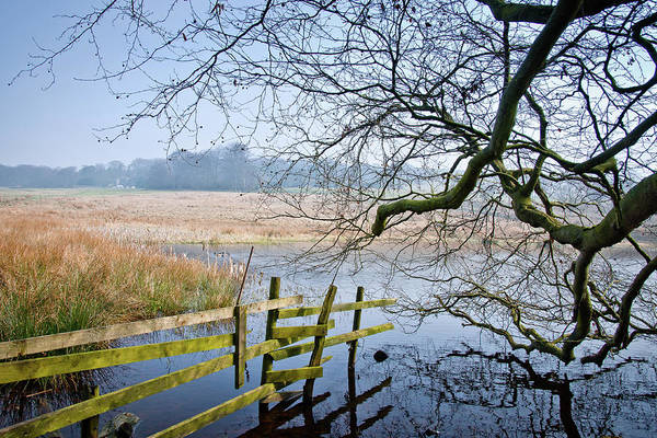Peak District National Park Photograph - Longshaw Estate Lake by Photo By David Button