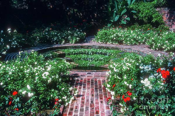 Photograph - Longue Vue Gardens by Bob Phillips