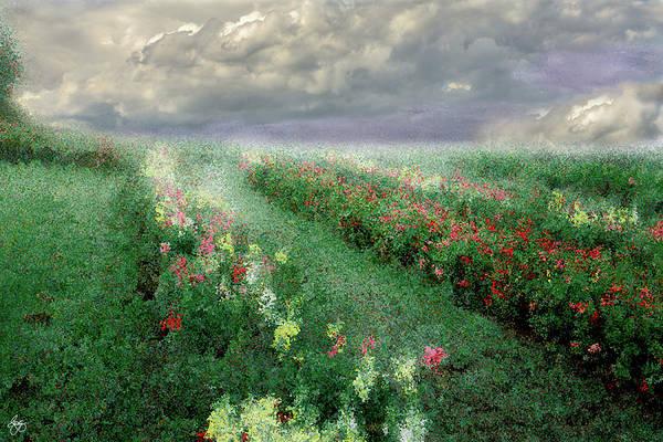 Photograph - Longview Flowers by Wayne King