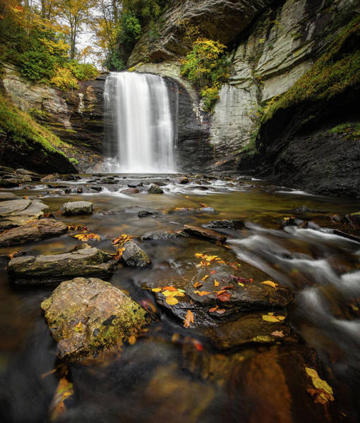 Photograph - Looking Glass Falls Autumn Setting by Donnie Whitaker