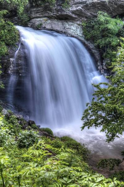 Photograph - Looking Glass Falls Overflowing Pisgah National Forest by Carol Montoya