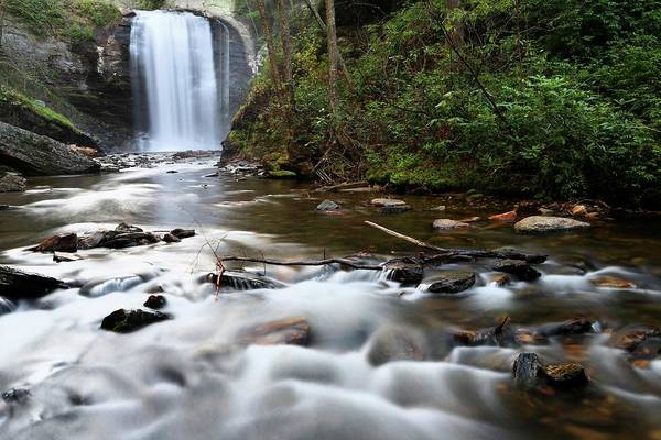 Photograph - Looking Glass Falls Pisgah National Forest by Carol Montoya