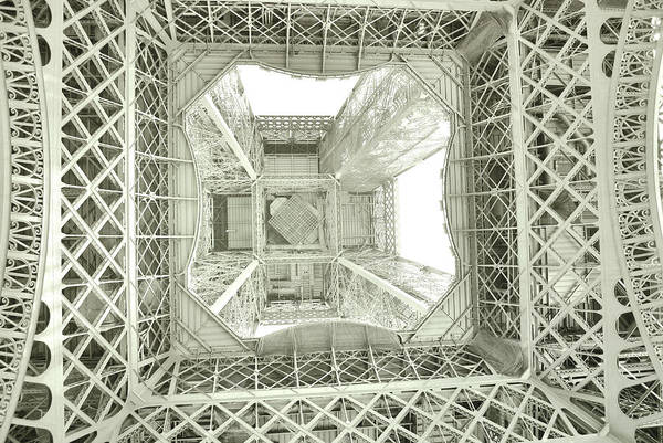 Photograph - Looking Up Art by JAMART Photography