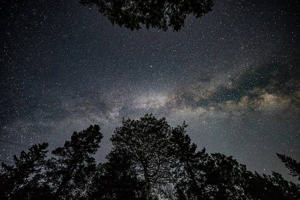 Photograph - Looking Up At The Milky Way by Darryl Hendricks