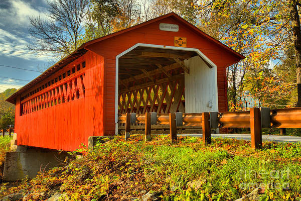 Photograph - Looking Up At The Silk Covered Bridge by Adam Jewell