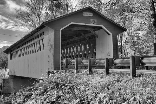 Photograph - Looking Up At The Silk Covered Bridge Black And White by Adam Jewell