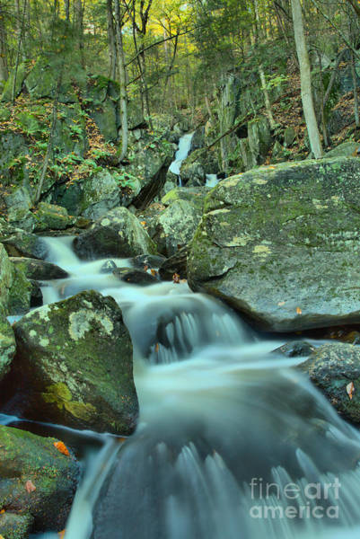 Photograph - Looking Up Goldmine Brook Falls Canyon by Adam Jewell