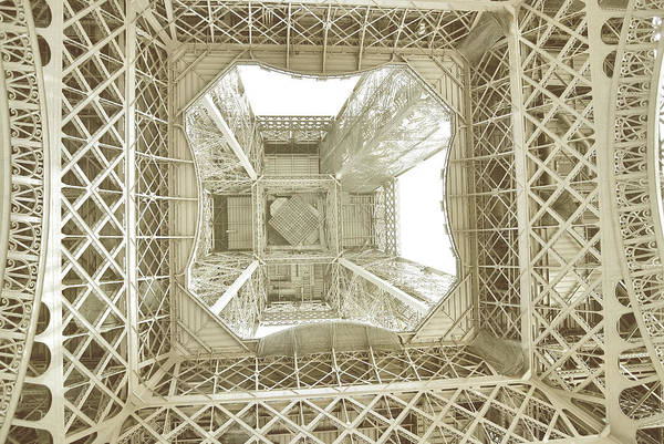 Photograph - Looking Up by JAMART Photography