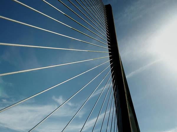Panama Photograph - Looking Up by Mr. P De Panama