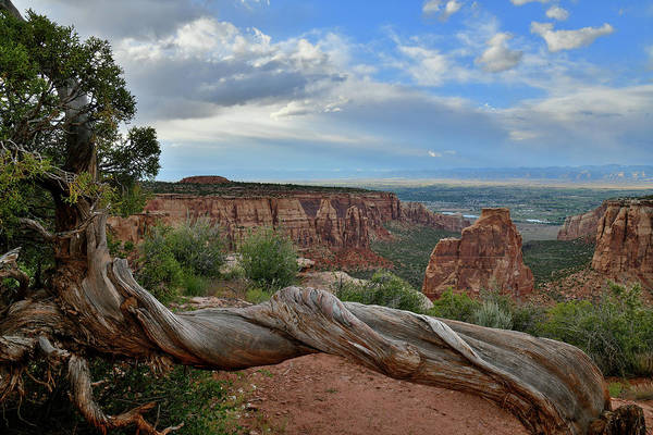 Photograph - Looking West From Grand View Point by Ray Mathis