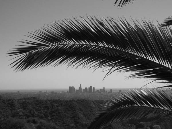 Wall Art - Photograph - Los Angeles Skyline From Hollywood Hills by Mike Shaffer