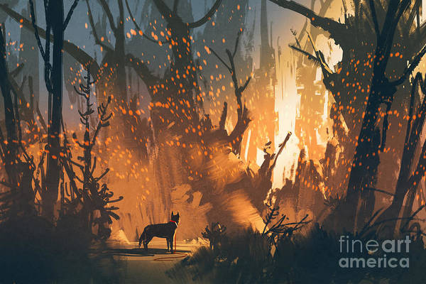 Wall Art - Digital Art - Lost Dog In The Forest With Mystic by Tithi Luadthong