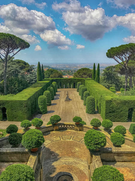 Apostolic Palace Photograph - Lost In The Hedge by Joseph Yarbrough