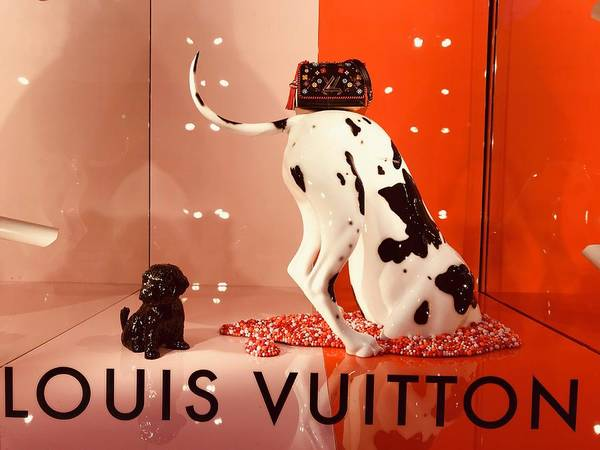 Arte Photograph - Louis Vuitton Signature Dog by Funkpix Photo Hunter