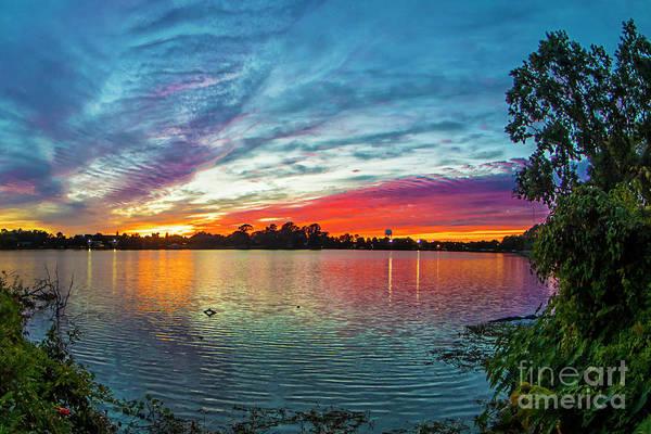 Photograph - Louisiana Sunset by Spade Photo