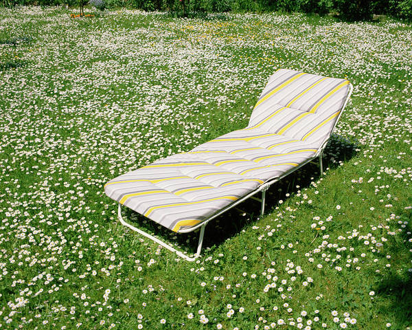 Lounge Chair Photograph - Lounge Chair In Meadow by Jupiterimages