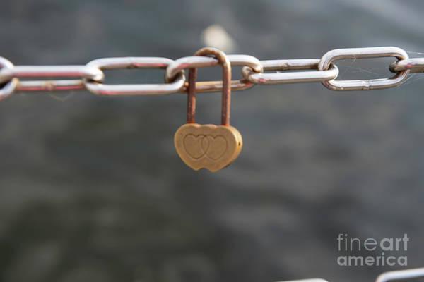 Photograph - Love by Jenny Potter