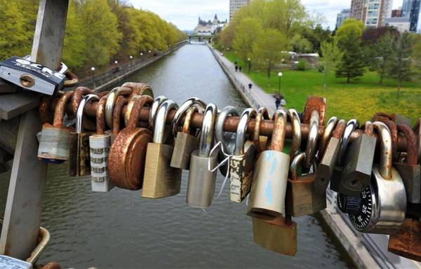 Wall Art - Photograph - Love Locks by Betty-Anne McDonald
