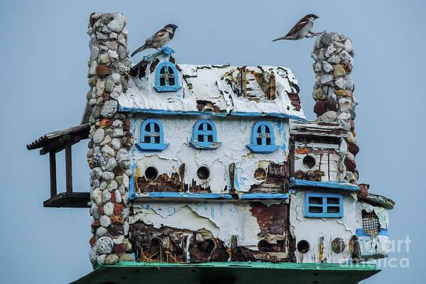 Photograph - Love My House by Randy J Heath