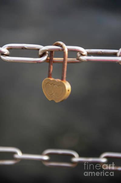 Photograph - Love Photo 2 by Jenny Potter
